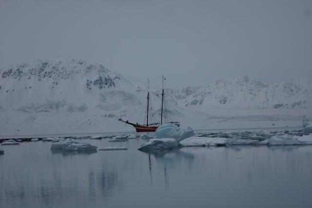 Noruega Barco Noorderlicht Hielo