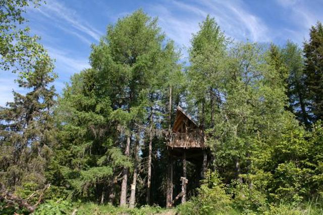 Noruega Tree Top Hut Brumunddal
