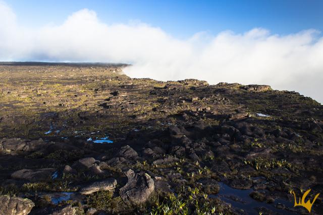 Venezuela Rorama Cima Nubes