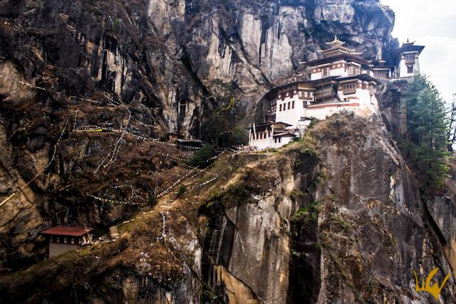 Butan Nido del Tigre