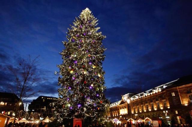Mercado Navidad Estrasburgo Arbol