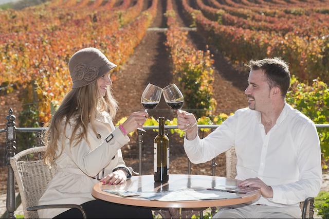 Ribera del Duero Aranda Pareja vino